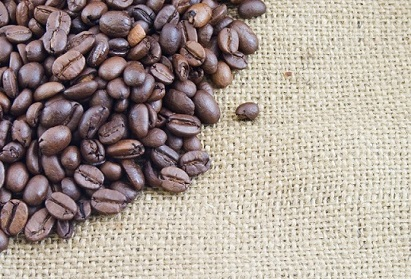freeimage-8247882-web-coffee beans edge on hessian cropped x411